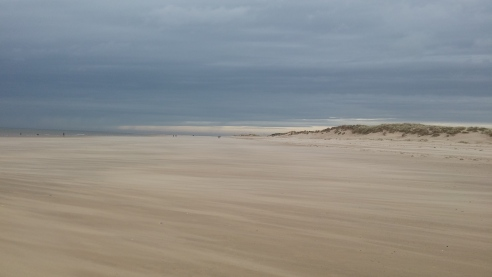 Active recovery up in Holkham Norfolk
